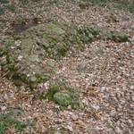 Neolityczny grób w formie półksiężyca