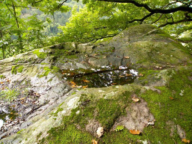 Kamień na szczycie Tiergarten z dwoma nieckami.
